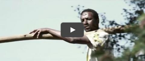 Amariyan (Ethiopian Movie Trailer) - coming soon