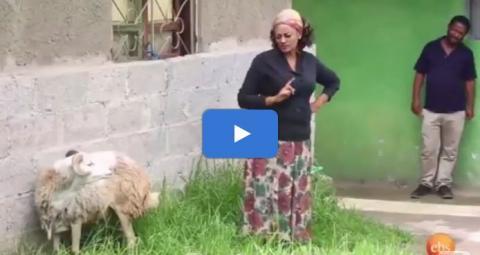 Demb ፭ - Episode 21 (Ethiopian Drama)