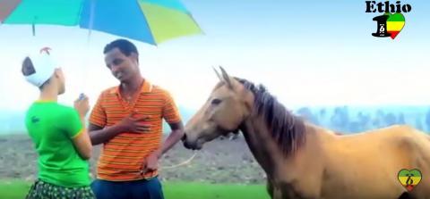 Temesgen Gebregziabher - Lebe Nedo (Ethiopian Music)